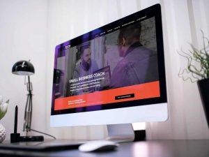 David Taubman Business Coach Website SEO Development by Paul D'Ambra Marketing Consultant